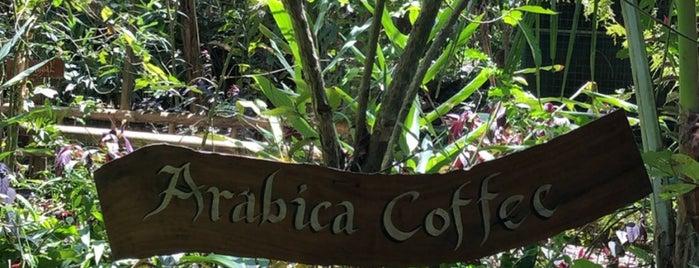 Teba Sari Bali Agrotourism is one of Haykさんのお気に入りスポット.