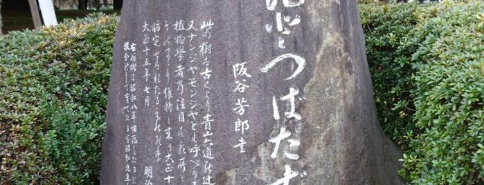なんじゃもんじゃの木 (ひとつばたご) is one of K'ın Kaydettiği Mekanlar.