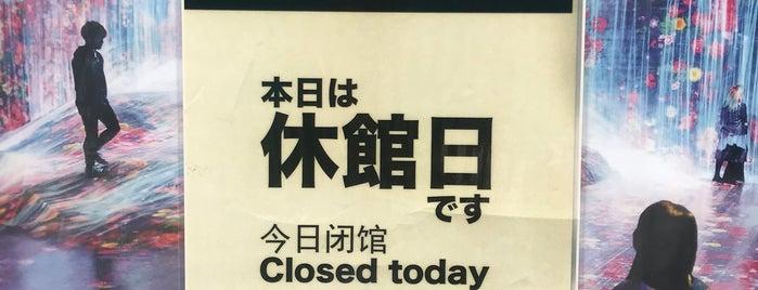 MORI Building DIGITAL ART MUSEUM: EPSON teamLab Borderless is one of Tokyo.