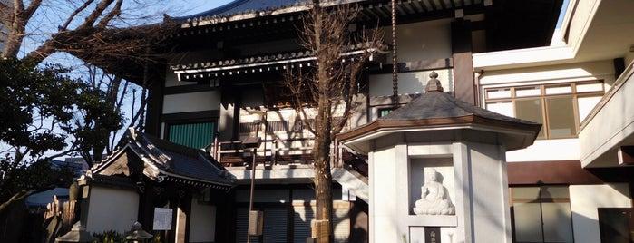 浄閑寺 is one of Tokyo.