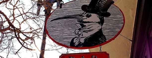 Blackbird Bar is one of Cerda's 'cisco..