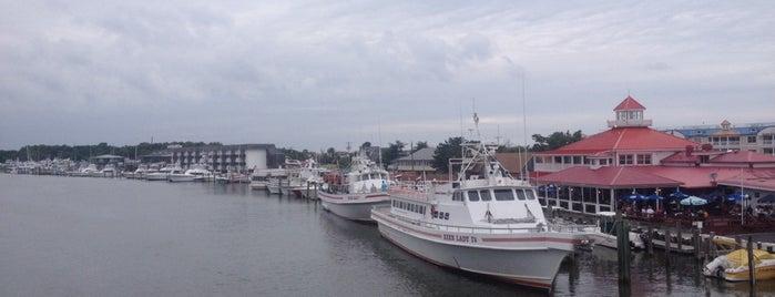 Fisherman's Wharf is one of Lieux qui ont plu à Linda.