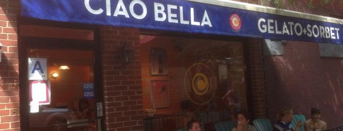 Ciao Bella Ice Cream is one of I Scream Badge in NY.