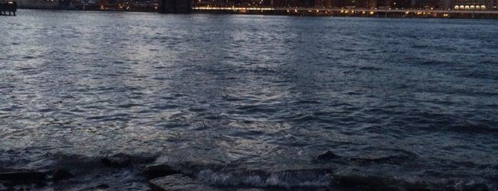 Brooklyn Bridge Park is one of Orte, die nikki gefallen.
