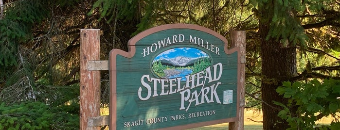 Howard Miller Steelhead Park is one of Bald Eagle Watching.