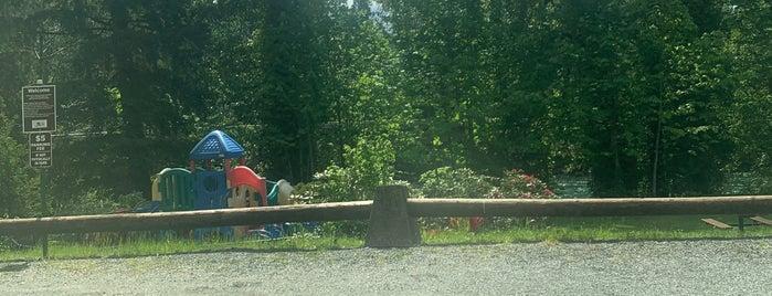 Howard Miller Steelhead Park is one of Bald Eagle Watching.