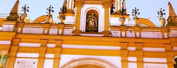 Basílica de la Macarena is one of Spain.