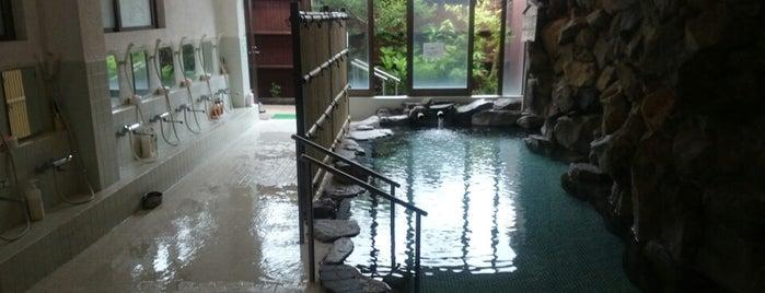 旅館 薩摩の里 is one of Lugares favoritos de Shigeo.
