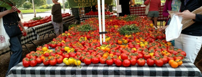 Green City Market is one of America's Freshest Farmers Markets.