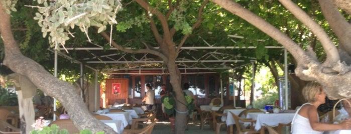Berke Cafe is one of datça.