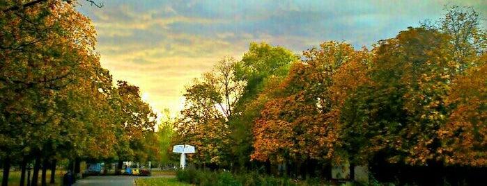 Парк Заимов is one of Sofia.