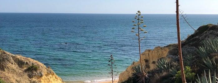 Praia dos Beijinhos is one of MENU : понравившиеся места.