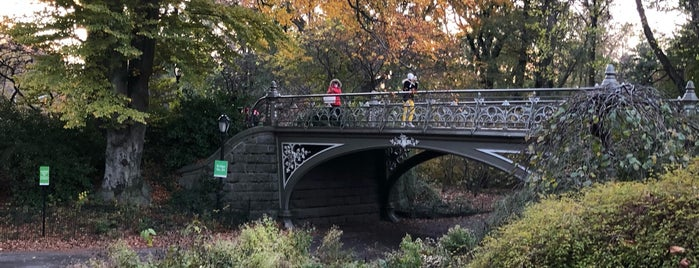 Bridge No. 24 - Central Park is one of NY'ın En İyileri 🗽.