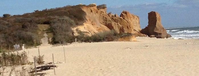 Lucy Vincent Beach is one of สถานที่ที่ Christine ถูกใจ.