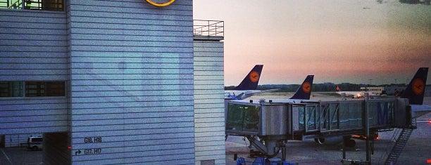 Aeropuerto de Múnich-Franz Josef Strauss (MUC) is one of Skyfall.