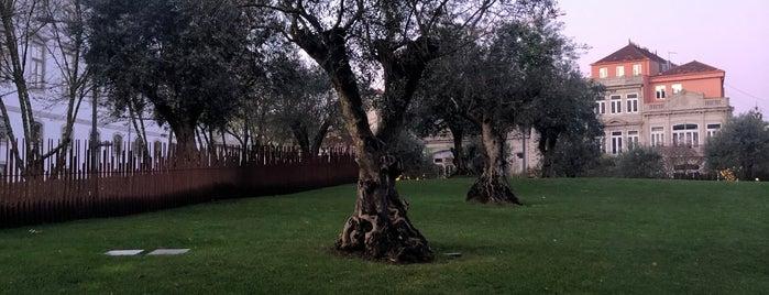 Jardim das Oliveiras is one of Porto parques.