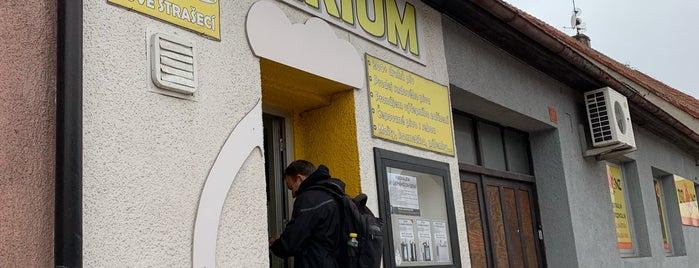 Pivárium - pivotéka Nové Strašecí is one of Pivotéky v Česku (pivnirecenze.cz).