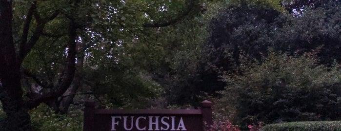 Fuchsia Dell is one of Locais curtidos por Fabio.