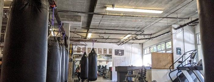 3rd St. Boxing Gym is one of Angela 님이 좋아한 장소.