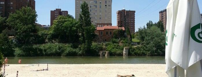 La Pera Limonera is one of สถานที่ที่บันทึกไว้ของ Miguel.
