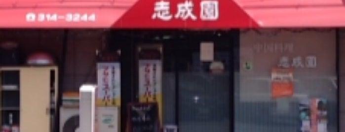 志成園 is one of Lugares favoritos de Shigeo.