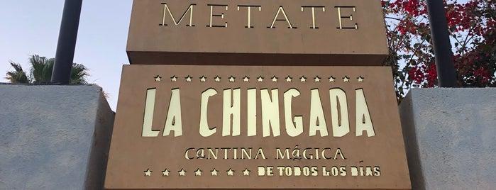 Metate Los Cabos is one of Juan : понравившиеся места.