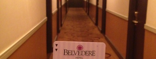 The Belvedere Hotel is one of Orte, die Laetitia gefallen.