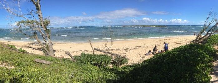 Malaekahana State Recreation Area is one of Favorite Local Kine Hawaii.