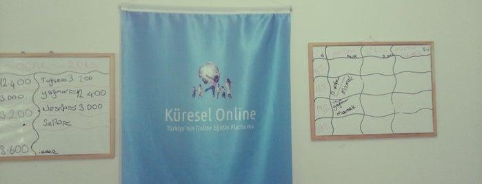 küresel online egitim merkezi is one of tugba.