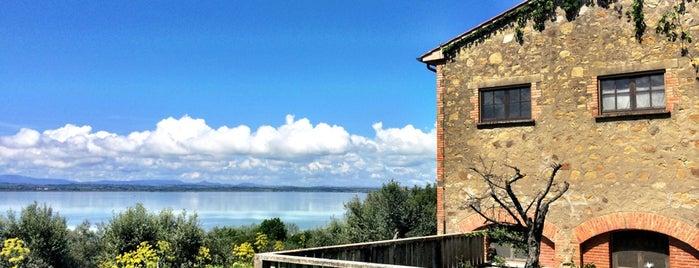 Fattoria Il Poggio is one of Locais curtidos por Viaggiatori.
