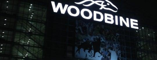 Woodbine Racetrack is one of Canada.