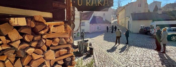 U Raka is one of Prague.