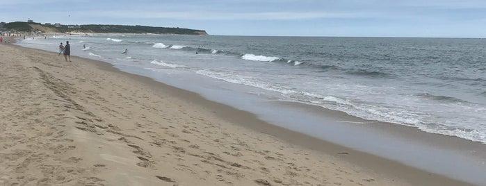 Scotch Beach is one of Lieux qui ont plu à Bianca.