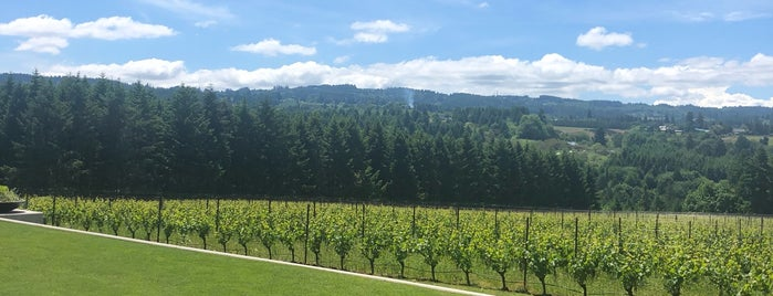 Ponzi Vineyards is one of T+L's Definitive Guide to Portland.