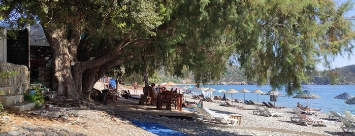Nil Pansiyon is one of สถานที่ที่ Turkay ถูกใจ.