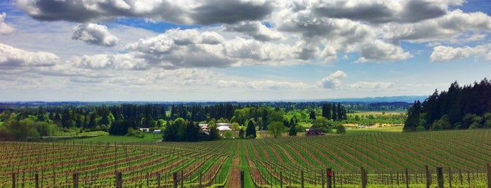 Sokol Blosser Winery is one of T+L's Definitive Guide to Portland.