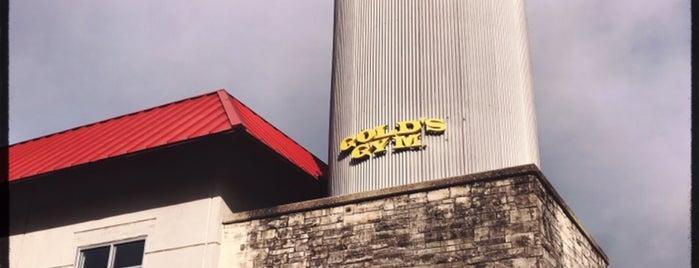 Gold's Gym is one of Locais curtidos por Tejas.