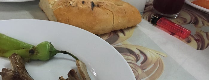 Bağ Restaurant is one of Lieux qui ont plu à Kadir.