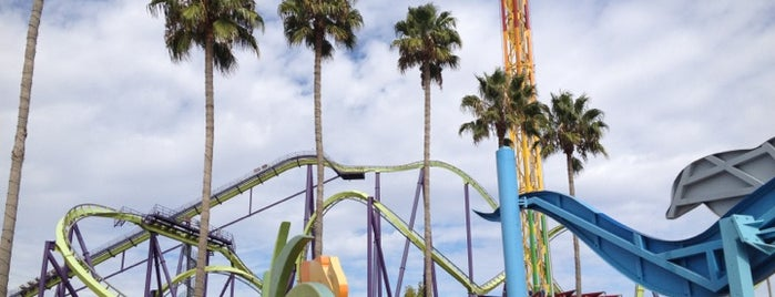 Six Flags Discovery Kingdom is one of Sights to See in San Francisco.