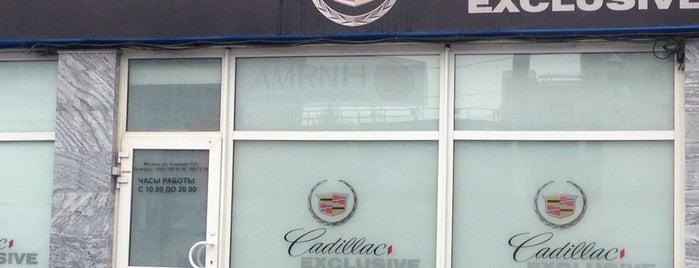 Cadillac Exclusive is one of Orte, die Olga gefallen.
