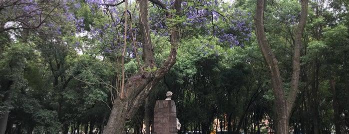 Bosque de Chapultepec is one of Siobhán'ın Beğendiği Mekanlar.