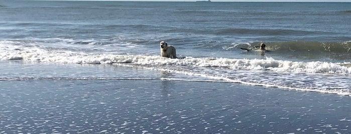 Blu Beach is one of สถานที่ที่ Marco ถูกใจ.