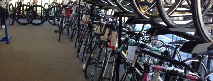 Bike America is one of Boca.