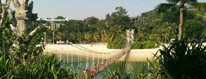 Palawan Beach is one of Lorraine 님이 좋아한 장소.