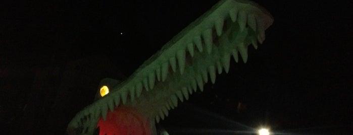 Krokodillo II is one of São Paulo..