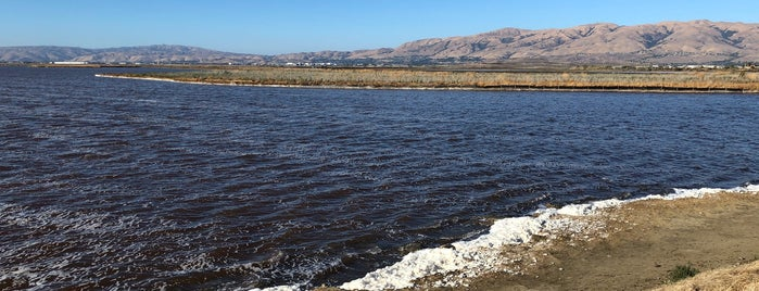 Alviso Marina County Park is one of To-Do in San Francisco.