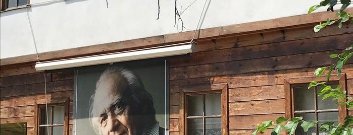Rıfat ILGAZ Kültür Ve Sanat Evi is one of Türkiye'de Bulunan 25 Edebiyat Müzesi.