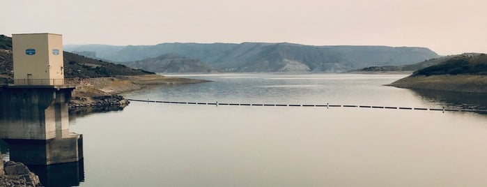 Blue Mesa Reservoir is one of CO Fly Fishing.