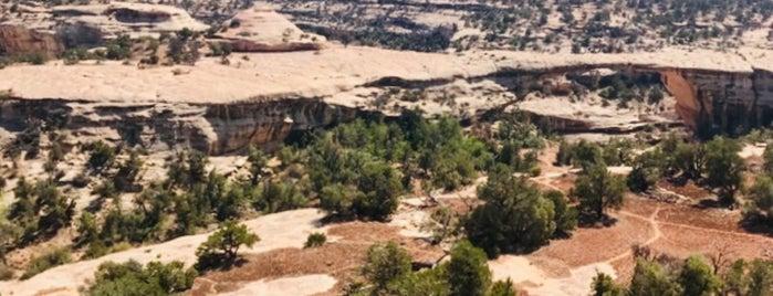 Natural Bridges National Monument is one of Utah + Vegas 2018.