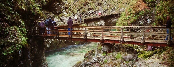 Soteska Vintgar (Gorge / Klamm / Gola) is one of The Bucket List.